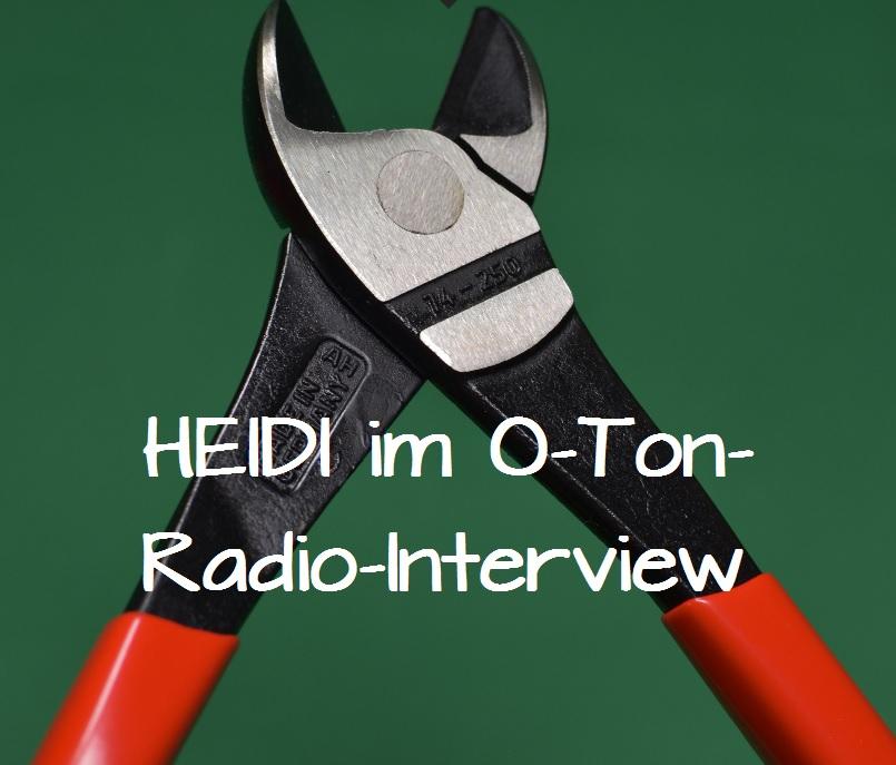 Heidi vom Lande, Bloggerin, Bergedorf Blog, Der Blog aus und für Bergedorf, Bolzenschneider, alsterradio, Hamburger Radiosender, Radio-Interview, O-Ton, Interview