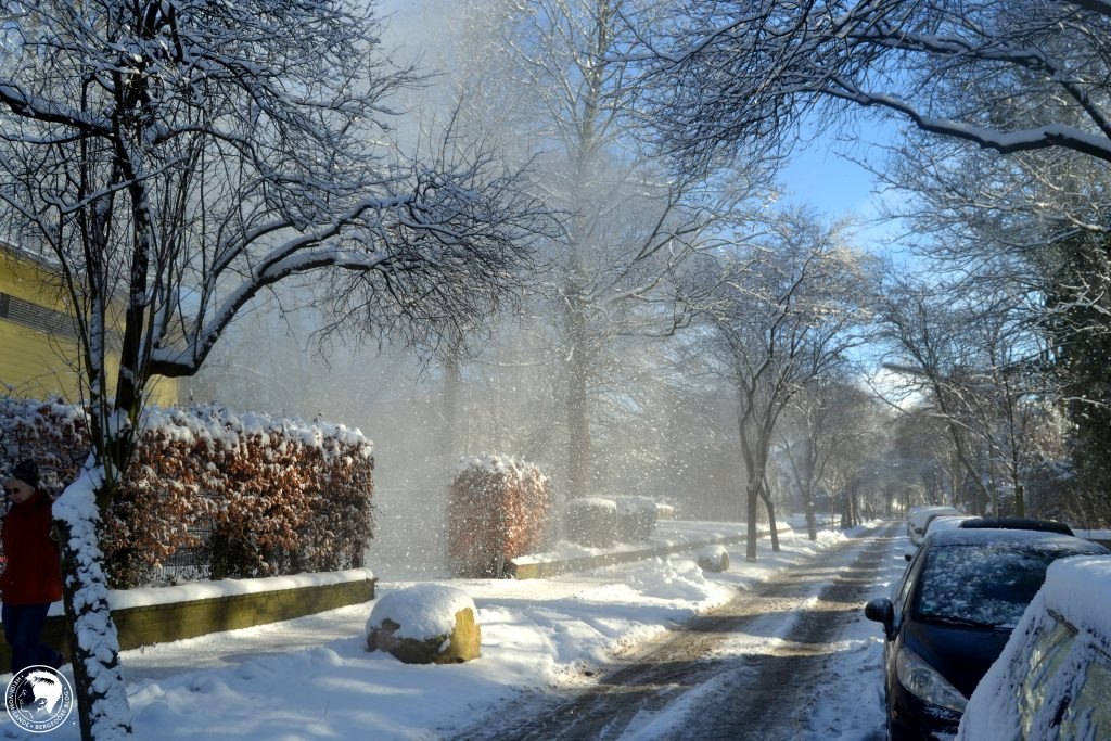 Winter, Impressionen, Schnee, Sonnenschein, Bergedorf, HEIDI VOM LANDE, Der Blog aus und für Bergedorf