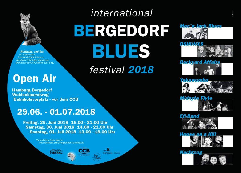 Bluesfestival, Blues, Reggae, Internationale Musik, Musiktipp, Gerhard Heiland, Bergedorfer Bahnhofsplatz, Bands, CCB, Bergedorf Blog, HEIDI VOM LANDE