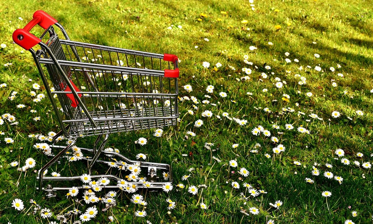 Shopping, Ostermarkt, Bergedorf, Sachsentor, Frühlingsmarkt, Bergedorfer Innenstadt, Sonderöffnung, Sonntagsshopping, Einkaufen am Sonntag, Hamburg, Bergedorf